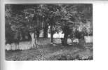 58.-  GERMIGNY-SUR-LOIRE .- Croix Moutalin - France