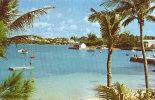 Cambridge Beaches And Mangrove - Bermuda