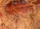 Cuevas De Altamira (Spagna) - Riproduzione BISONTE AL GALOPPO - PERFETTO D12 - Andere Verzamelingen