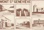 Mont Sainte Genevieve  ( Carte Adeps ) - Lobbes