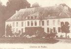 Chateau De Pailhe  Havelange  ( Carte Adeps ) - Havelange