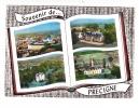 CPSM - 72 - PRECIGNE - Multivues  édition Lapie - France