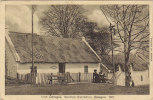 IRISH COTTAGES .... GLASGOW 1911