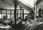 Westerlo : Hotel Valkenhof  : Wintertuin(  Groot Formaat )  NELS  Uitg. Ets. Ern. Thill - Westerlo