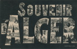 ALGÉRIE - Souvenir D'ALGER - Jolie Carte Vues Multiples écrite En 1905 - Algiers