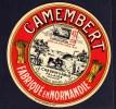 CAMEMBERT LES DEUX FALAISIENS - Cheese