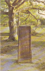18554 Rufus Stone, New Forest - PT2726 - Angleterre