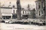 FERE-CHAMPENOISE TROUPEAU DE MOUTONS DEVANTURE LE FAMILISTERE BONNETERIE 51 MARNE - Fère-Champenoise