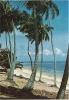 CPM BRESIL BRASIL NATAL Praia De Pirangi / Plage, Cocotiers / Beach / Timbre Imprimé 1972 Correio - Natal