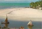 CPM BRESIL BRASIL NATAL Praia Do Pirangi / Plage, Cocotiers, Pirogue, Bateau à Voile / Beach - Natal