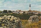 18622 Ile De Ré, Ars En Ré échappée Vers Clocher. 168 Artaud HN 36 Mur Pierres Seches