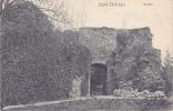 SALM-CHATEAU - Ruines - Castles