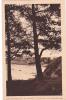 18654 ST- CAST( Cote D´emeraude) Une Envolée Sur La Plage De Pen Guen . Laurent Nel