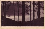 K.u.k Feldpost -Forest Panorama - Salzburg. Old  Postcard Circulated - Salzburg Stadt