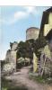 42 ST MAURICE Sur LOIRE  Entree Du Chateau Cpam Pm - France