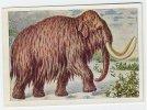 Wunder Aus Technik Und Natur (1932) - 67 - Mammut, Mammoet, Mammoth, Mammouth - Cigarettes