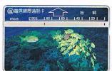 TAIWAN - CHUNGHWA TELECOM (L&G) - 1995  D5028 VITA MARINA (SEA LIFE: FISHES)    (CODE 507F)  - USED ° -  RIF. 4706 - Taiwan (Formosa)
