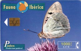 *SPAGNA - FAUNA IBERICA: PANDORA* - Scheda Usata - Spagna