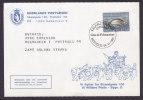 Greenland Special Cancel Card NÆSTVED Glas & Frimærker 1985 Dog Sled Attalage De Chiens Cachet - Groenland
