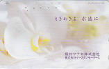 Télécarte Japon / 110-270 - Fleur ORCHIDEE - ORCHID Flower Japan Phonecard - Blume Telefonkarte - ORQUIDEA - MD 954 - Fleurs