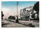 TIRRENIA - Viale Del Tirreno - Cartolina FG BR V 1960 - Italia