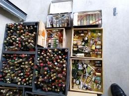 RARE : COLLECTION DE PLUS DE 2000 MIGNONETTES !!! - Miniatures