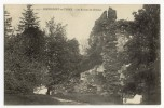 ROCHEFORT En TERRE - Les Ruines Du Château - Rochefort En Terre