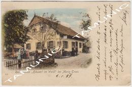 040 AUSTRIA MARIA -TROST RESTAURATION HAUSERL IM WALD - TRAVELING FOR RAGUSA DUBROVNIK (CROATIA) 1899 - Unclassified