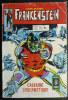 PETIT FORMAT FRANKENSTEIN 10 AREDIT (1) - Frankenstein