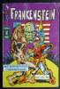 PETIT FORMAT FRANKENSTEIN 13 AREDIT (1) - Frankenstein