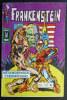 PETIT FORMAT FRANKENSTEIN 13 AREDIT (2) - Frankenstein
