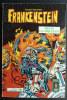 PETIT FORMAT FRANKENSTEIN 17 AREDIT (1) - Frankenstein
