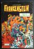 PETIT FORMAT FRANKENSTEIN 17 AREDIT (2) - Frankenstein