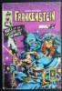 PETIT FORMAT FRANKENSTEIN 19 AREDIT - Frankenstein