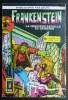 PETIT FORMAT FRANKENSTEIN RECUEIL  3030 AREDIT 2 N°  1 Et 2 - Frankenstein