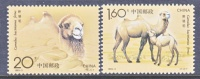 PRC  2433-4  **  FAUNA  CAMELS - Unused Stamps