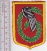 France Armee De Terre 6ieme Legere Division Blindee - Patches