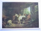 Morland, George  Inside Of A Stable Tate Gallery London Art Postcard - Paintings