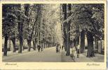 _Np400: ROERMOND -Kapellelaan ... Postzegel.. Fietsers Staan Stil En Poseren.. Ook De Wandelaars... - Roermond