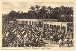 TRIPOLI MERCATO DI SUK EL GIUMA TRES ANIMEE CIRCA 1910 LIBIA - Libië
