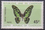 £9 - CAMEROUN - N° 529 - NEUF SANS CHARNIERE - Cameroun (1960-...)