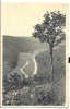MARTELANGE. La Sûre. Nels. Postée 1951 - Cartes Postales