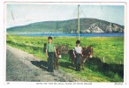 EIRE46  ACHILL ISLAND : Going For Turf - Mayo