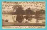 BIRMANIA RANGOON - YANGON - DALHOUSIE PARK CARTOLINA FORMATO PICCOLO VIAGGIATA NEL 1910 - Cartoline