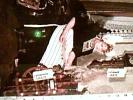 HOLLAND  VOLENDAM  ALIDA HOEVE N1970 DJ11596 - Costumi