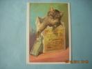 HUILE  OIL ECLECTRIC   CHAT    RETIRAGE    DE 1985 - Publicidad