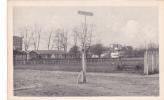 18698 94 Champigny , Champ De Courses Du Tremblay, Vue Sur Les Tribunes . 1003 éd Terrier, Le Perreux - France