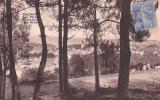 18722 Tréboul Les Villas à Travers Les Pins. CIM - Texte En Breton Correspondance Breiz - Tréboul