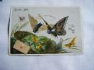 Image Chromo Papillon-bonne Fete--serie 203-hirondelle Dans L´enveloppe Va Ou Mon Coeur  T´envoie - Fiches Illustrées