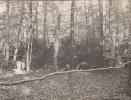 SOLDATS ALLEMANDS-ENTRAINEMENT DANS LES BOIS-CARTE PHOTO - Guerre 1914-18